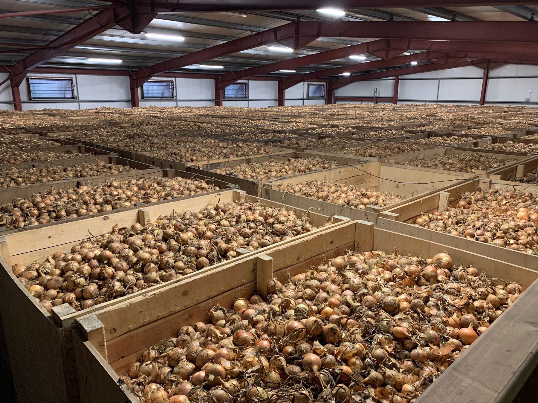 Onion-storage