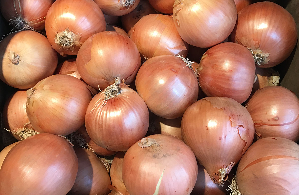 Brown-onions-2