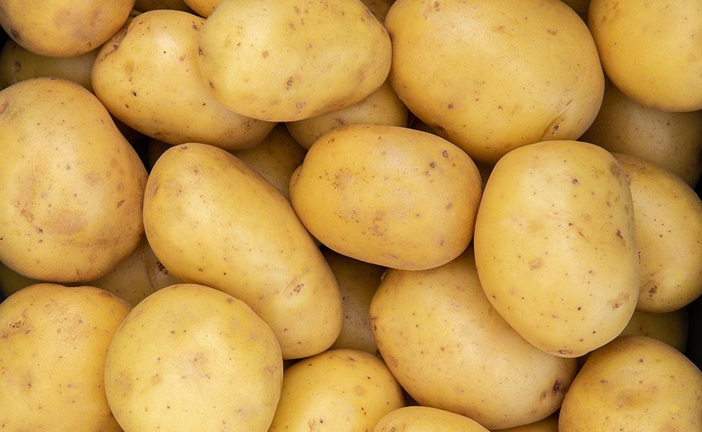 Organic-potatoes-large-file-size